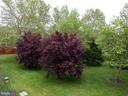 So much green space - 43955 CHOPTANK TER, ASHBURN