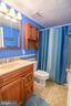 Hall bath - 339 LAKE SERENE DR, WINCHESTER