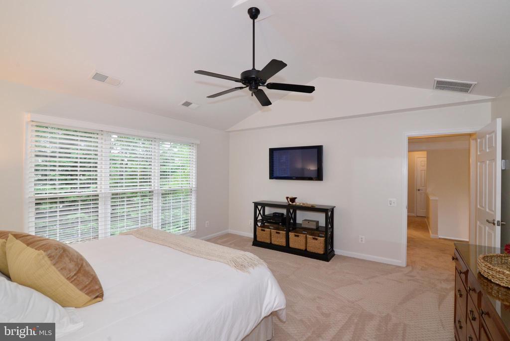 Master bedroom - 20407 ROSEMALLOW CT, POTOMAC FALLS