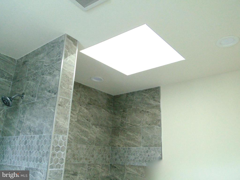 Skylight in the master suite bathroom - 5710 4TH ST NW, WASHINGTON