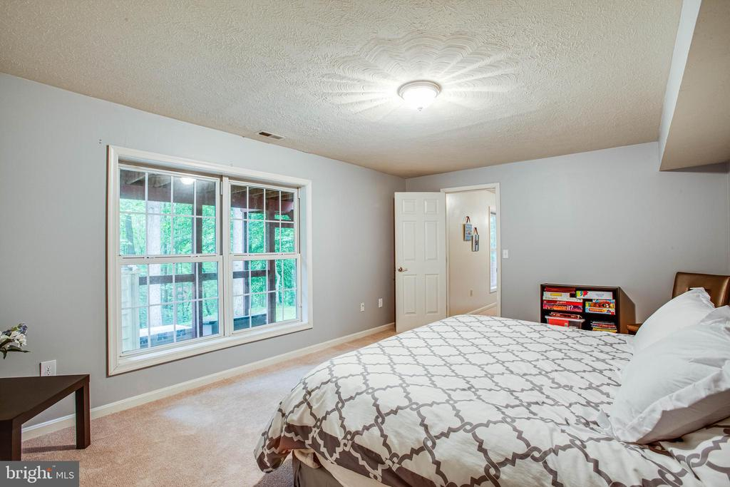 5th legal bedroom (basement level) - 3408 TITANIC DR, STAFFORD