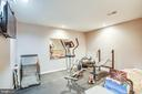 Gym (basement level) - 3408 TITANIC DR, STAFFORD