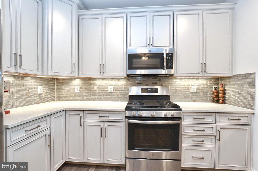 Upgraded Cabinets - 21025 ROCKY KNOLL SQ #203, ASHBURN