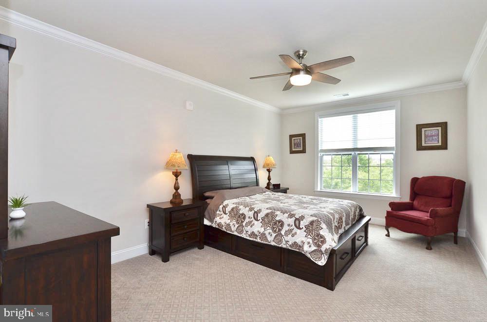 Master Bedroom - 21025 ROCKY KNOLL SQ #203, ASHBURN