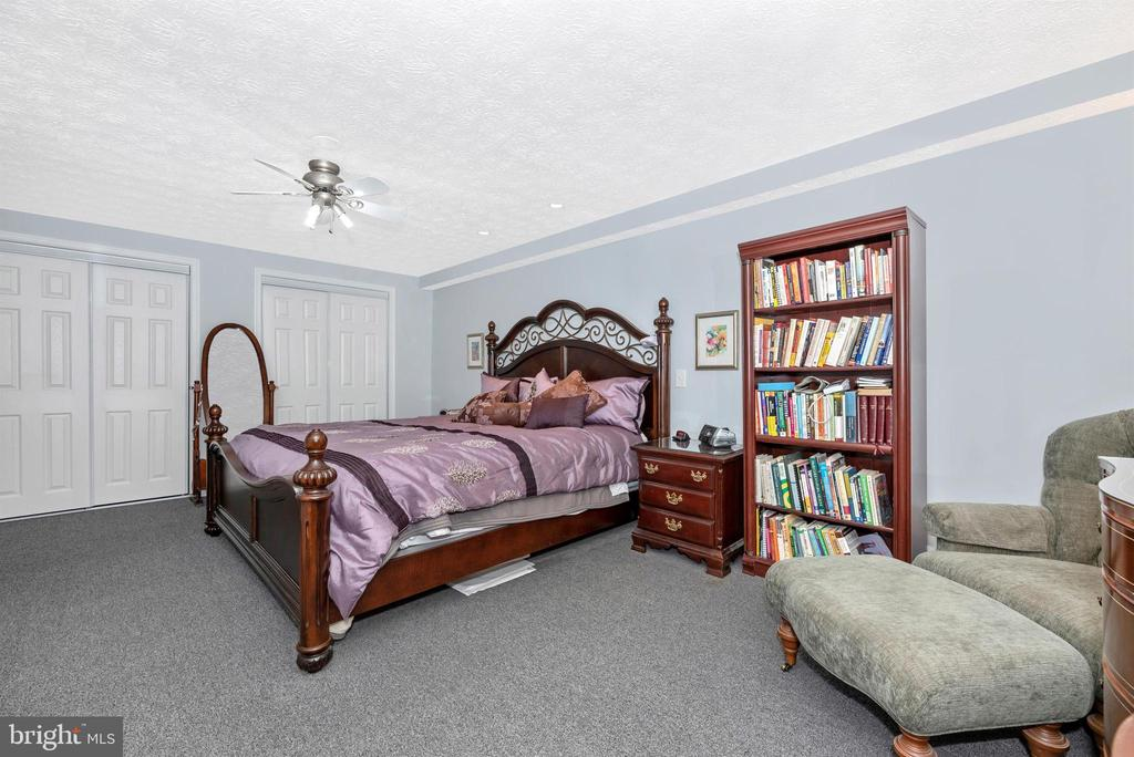 Lower Level Master Bedroom with lots of closets - 3001 GILLIS FALLS RD, MOUNT AIRY