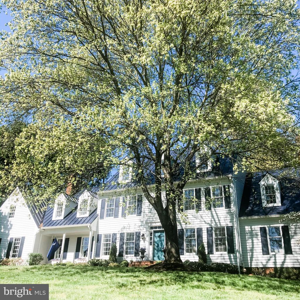 Welcome Home - 37175 ADAMS GREEN LN, MIDDLEBURG