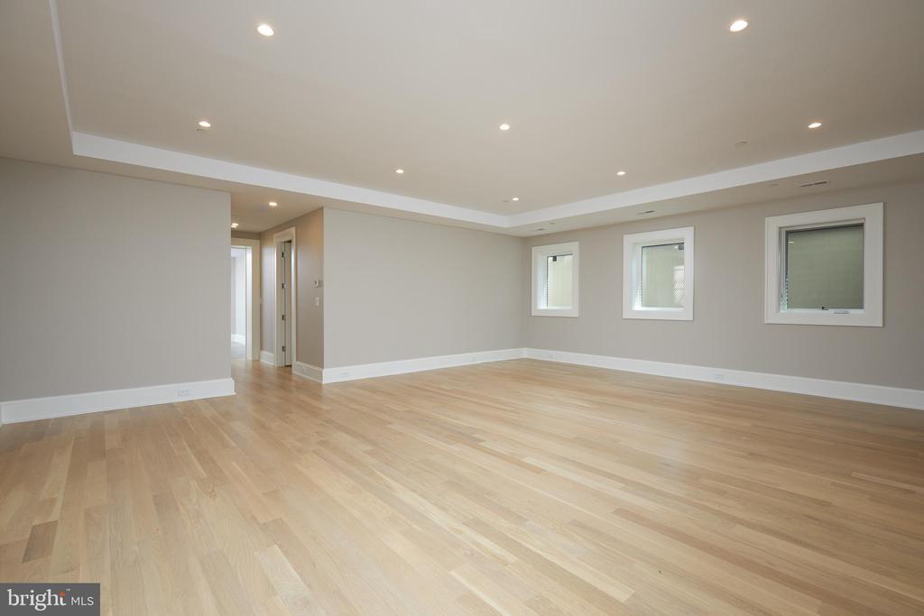 Lower Level Rec Room - 3113 ALBEMARLE ST NW, WASHINGTON