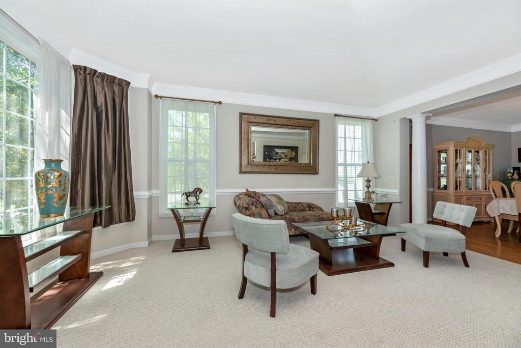 Lots of natural light in the living room - 3656 BYRON CIR, FREDERICK