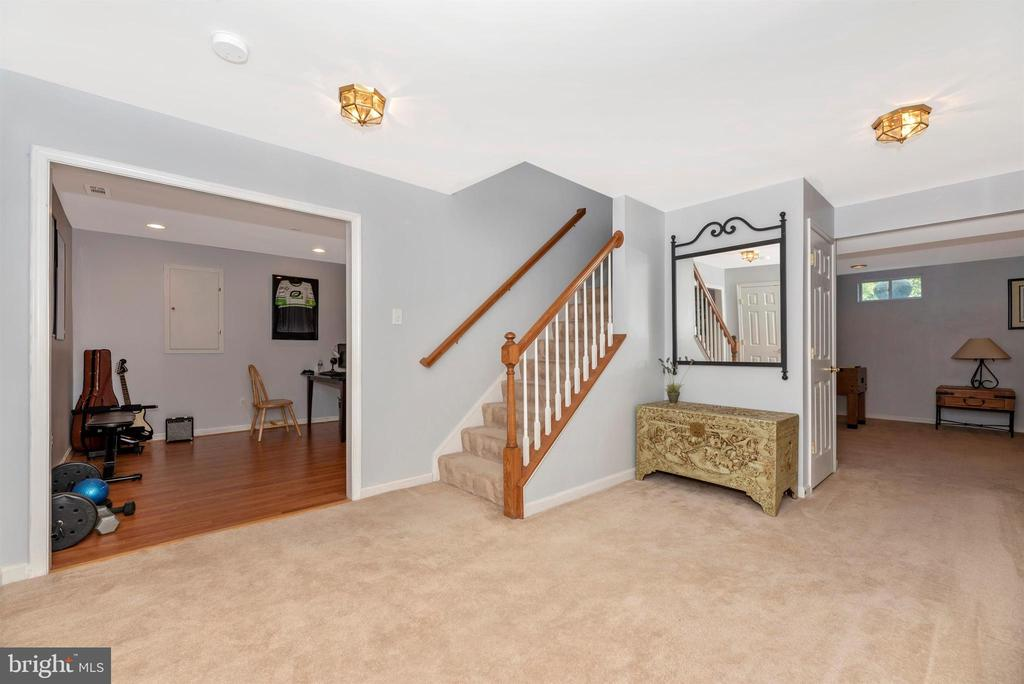 Lower level - 3656 BYRON CIR, FREDERICK