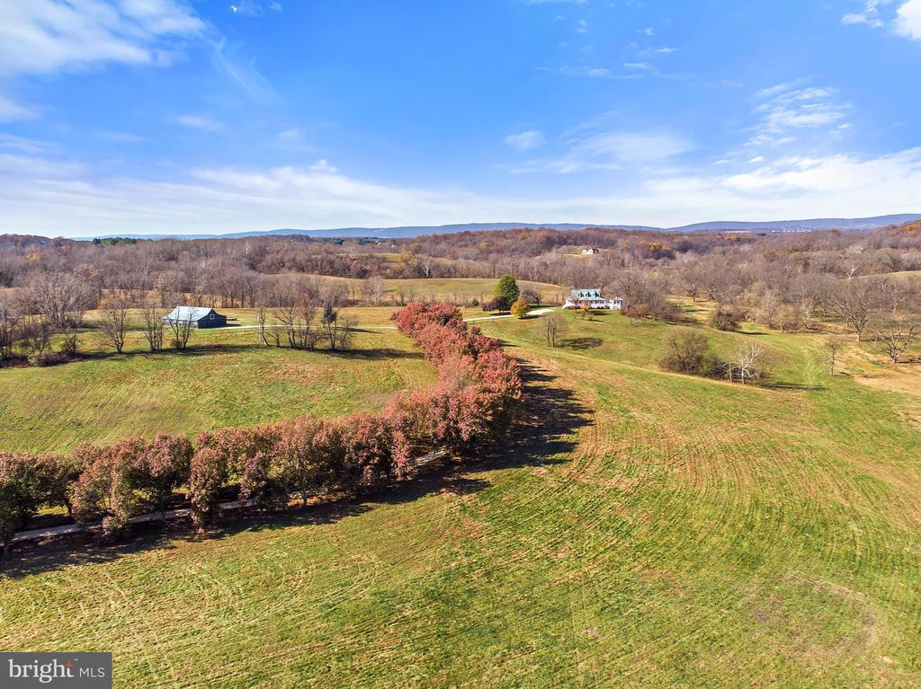 Stunning panoramic views of the Blue Ridge - 19745 SHELBURNE GLEBE RD, PURCELLVILLE