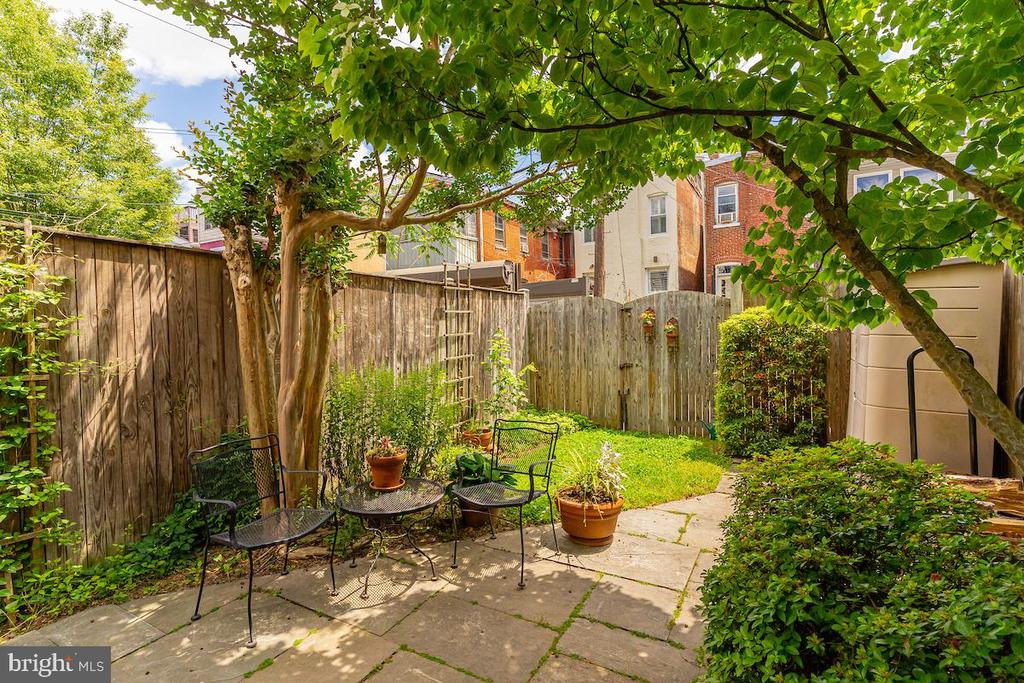Fenced back yard-alley access - 1426 SWANN ST NW, WASHINGTON