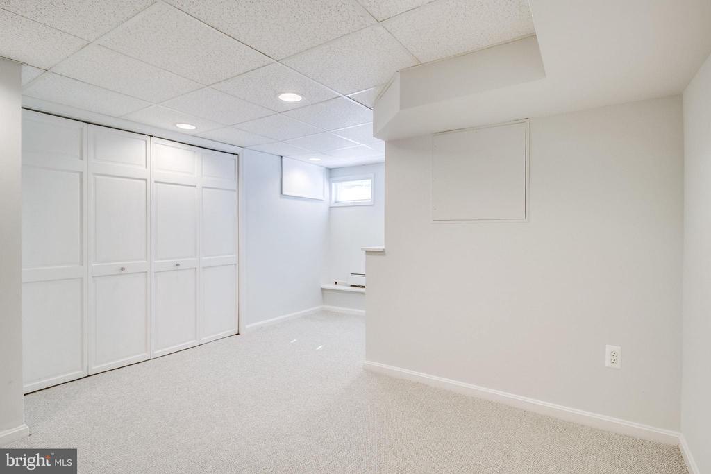Storage closet lower level--doors closed. - 116 S PITT ST, ALEXANDRIA
