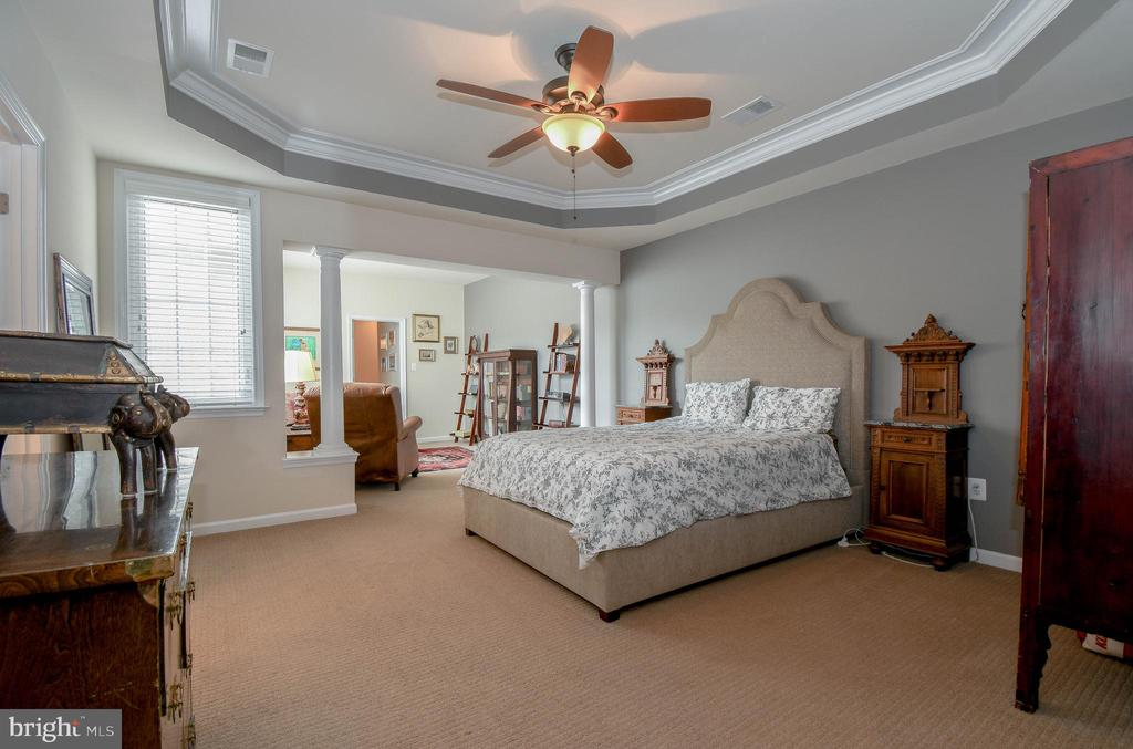 Master bedroom w/ tray ceiling - 19410 FRONT ST, LEESBURG