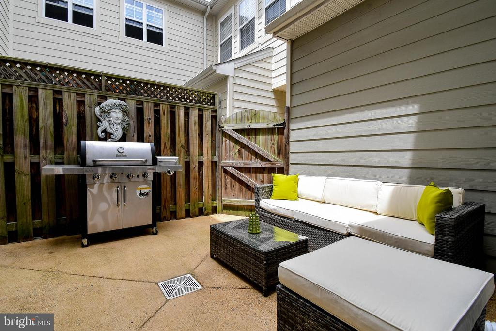 Private enclosed patio - 19410 FRONT ST, LEESBURG