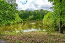 take your kayak for a spin from your backyard - 147 SANFORD FERRY CT, FREDERICKSBURG