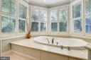 Soaker jacuzzi bathtub - 1002 MOSS HAVEN CT, ANNAPOLIS