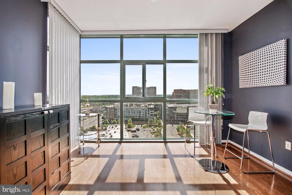 Floor to ceiling windows - 11700 OLD GEORGETOWN RD #1113, NORTH BETHESDA