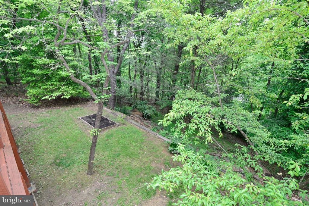 View from Deck - 234 PINE CREST LN, BLUEMONT