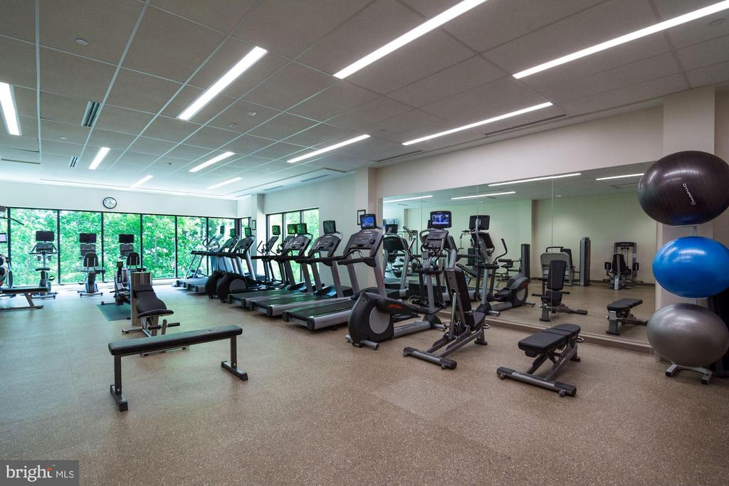 Fitness Center - 5902 MOUNT EAGLE DRIVE #1505, ALEXANDRIA