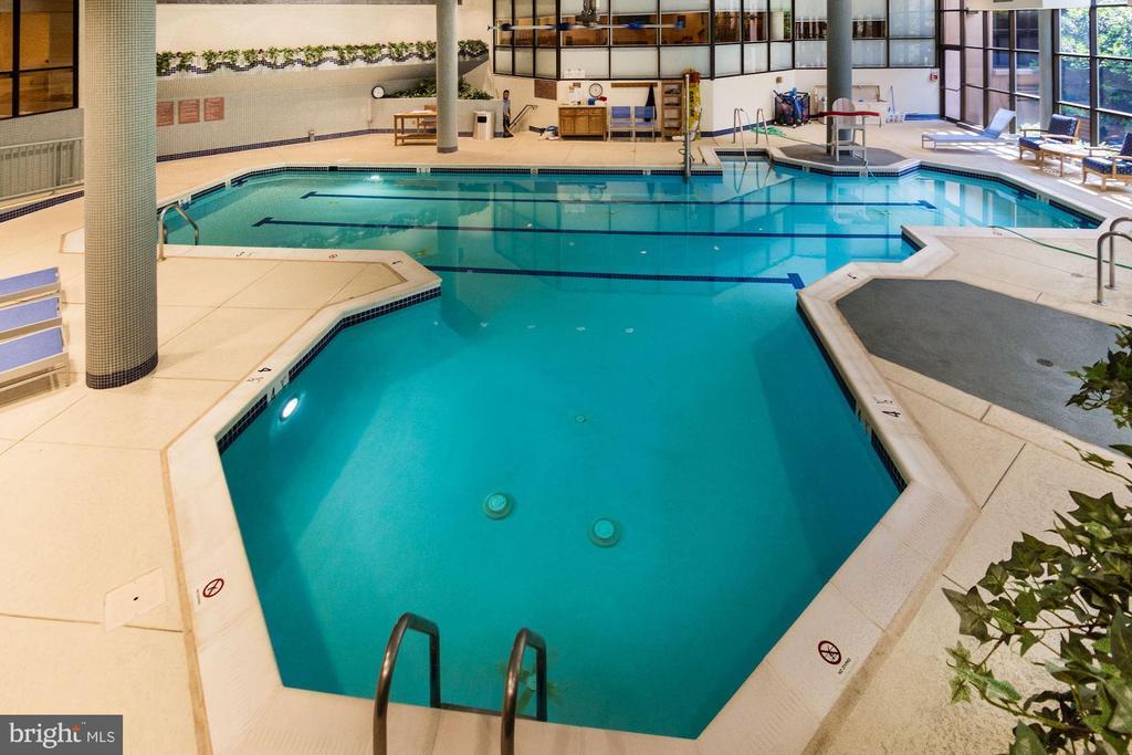 Indoor pool - 5902 MOUNT EAGLE DRIVE #1505, ALEXANDRIA