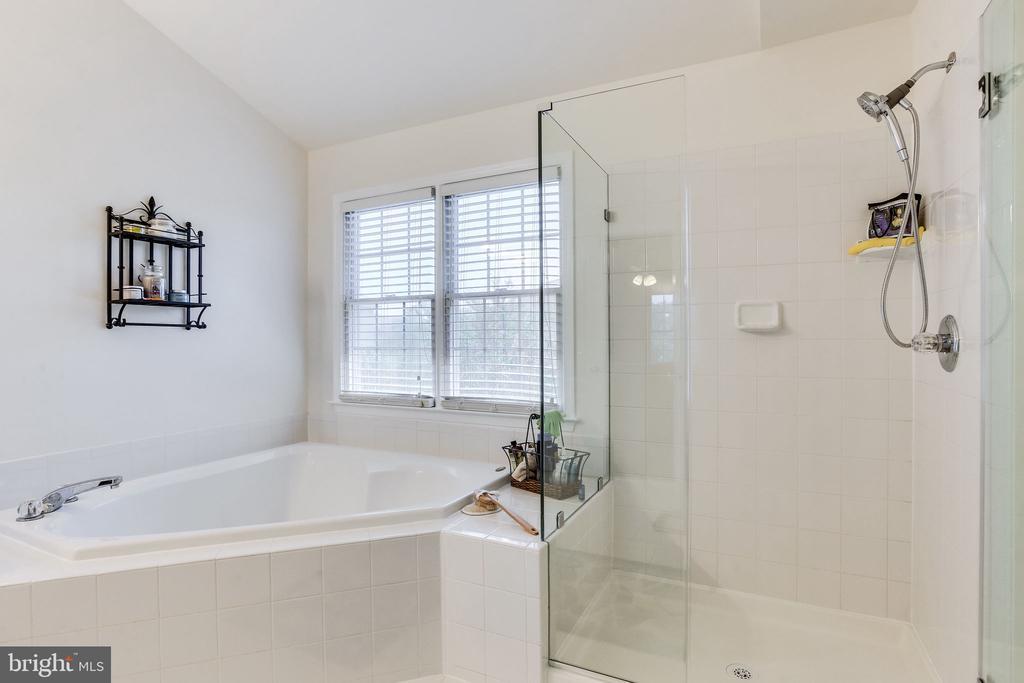 Frameless walk-in shower - 22766 OATLANDS GROVE PL, ASHBURN