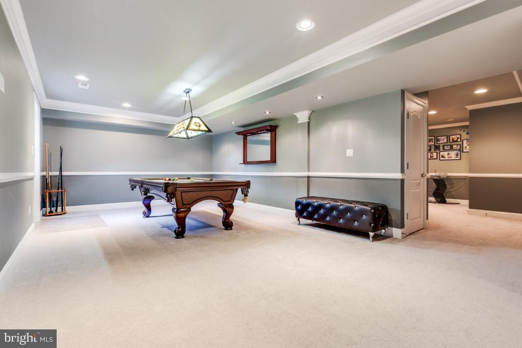 Open Rec Room - 21921 SILVERDALE DR, ASHBURN