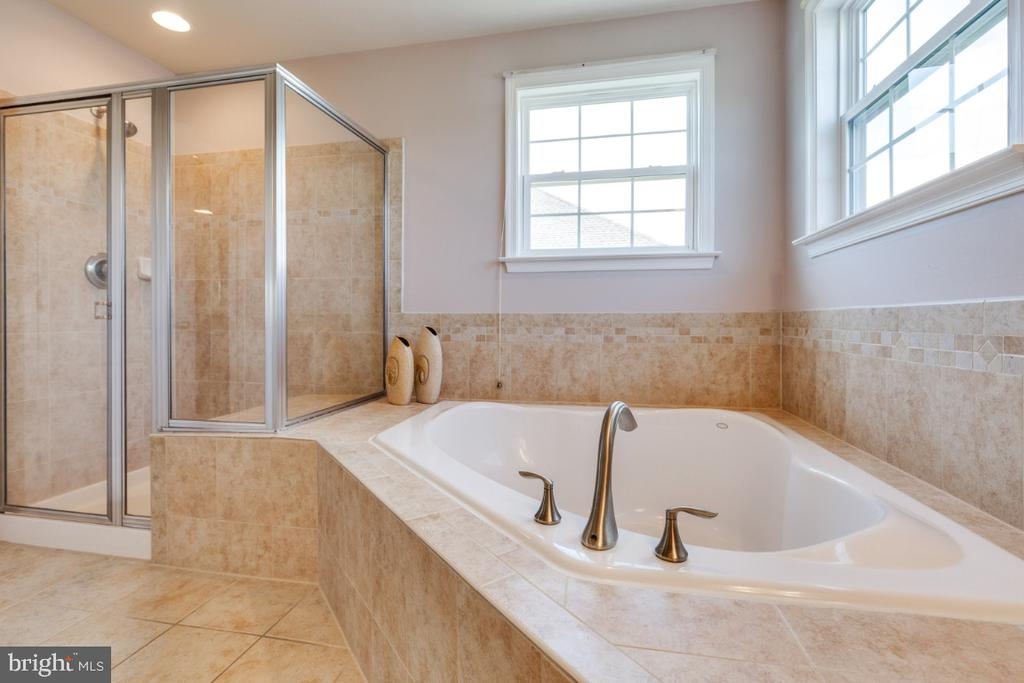 Luxury Bath with Separate Shower & Soaking Tub - 21921 SILVERDALE DR, ASHBURN