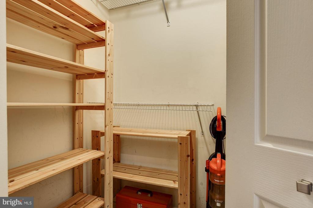 Walk-in coat/storage closet in foyer - 1312 MASSACHUSETTS AVE NW #109, WASHINGTON