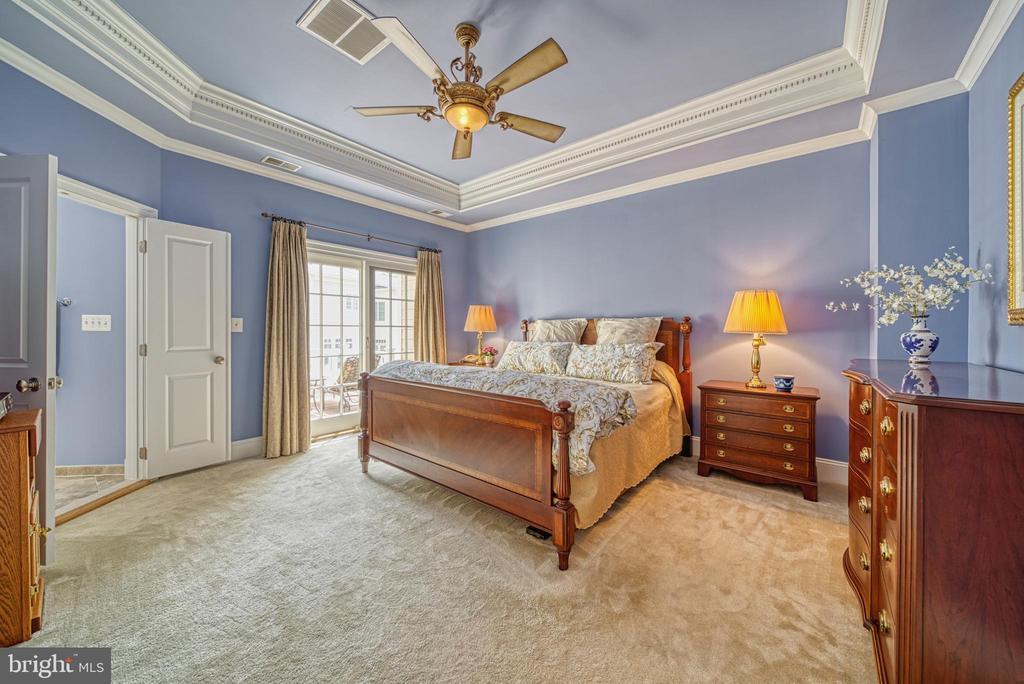 Talk about Sumptuous! Suite with Private Deck - 6745 DARRELLS GRANT PL, FALLS CHURCH