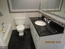 Bath Room - 13008 ROCK SPRAY CT, HERNDON