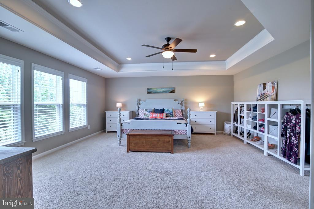 Spacious Master Bedroom with Tray Ceilings - 42602 STRATFORD LANDING DR, BRAMBLETON