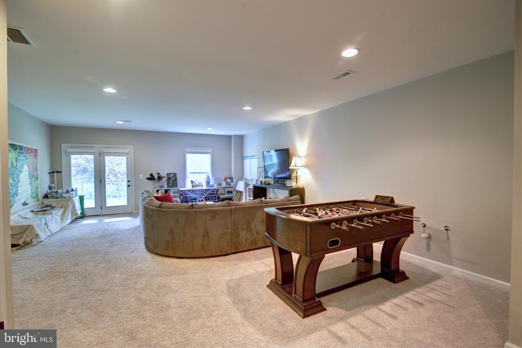 Walkout Basement with Full Bedroom & Bathroom - 42602 STRATFORD LANDING DR, BRAMBLETON
