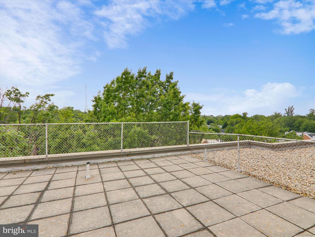 Roof Deck with lovely  green views - 5315 CONNECTICUT AVE NW #108, WASHINGTON