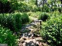 Pathesthrough gardens - 38025 JOHN MOSBY HWY, MIDDLEBURG