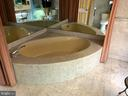 Master bath - 1300 CRYSTAL DR #1306S, ARLINGTON