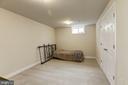 Lower level flex room - 4 BRANNIGAN DR, STAFFORD