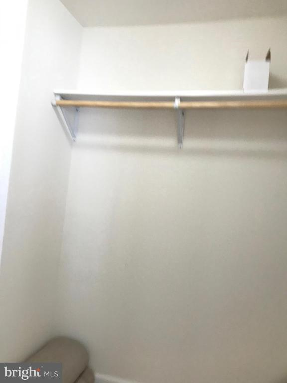Walk In Closet - BR #4 - 112 FREESIA LN, STAFFORD