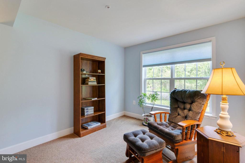 Lower Level Bedroom Sitting Area - 8 BATTERY POINT DR, FREDERICKSBURG