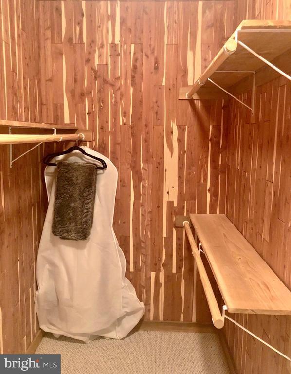Cedar Closet - 40243 FEATHERBED LN, LOVETTSVILLE