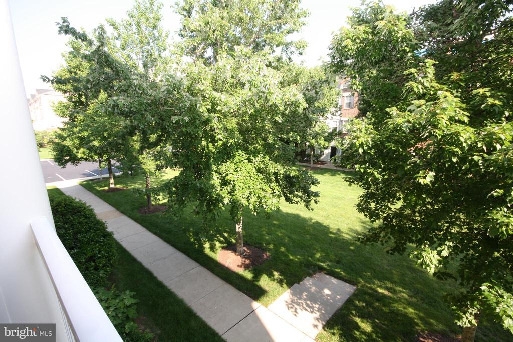 Expansive View from Patio - 22691 BLUE ELDER TER #204, BRAMBLETON