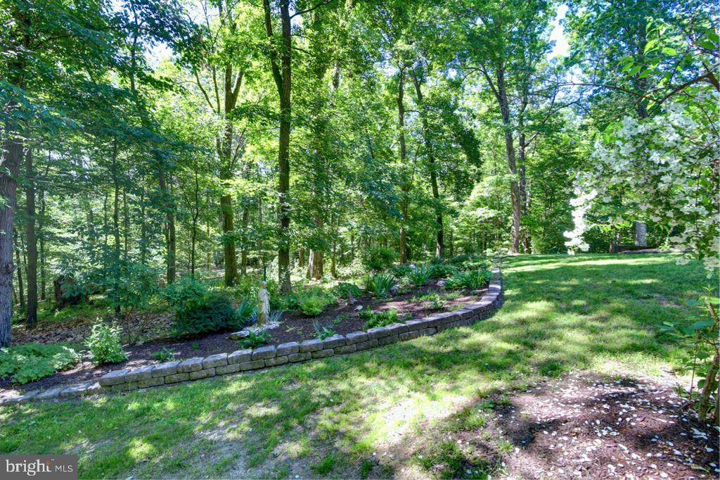 Nice Front Yard w/ Landscaping - 12729 MYERSVILLE LN, LEESBURG