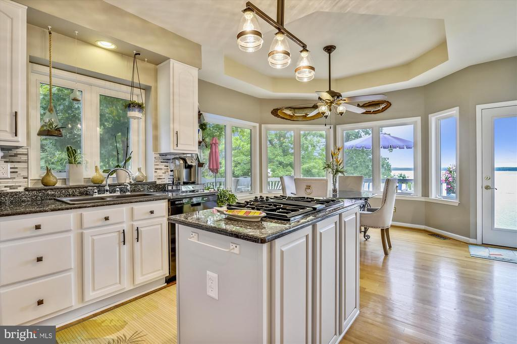 Chef's kitchen w modern appliances and cabinetry - 19 POTOMAC OVERLOOK LN, STAFFORD