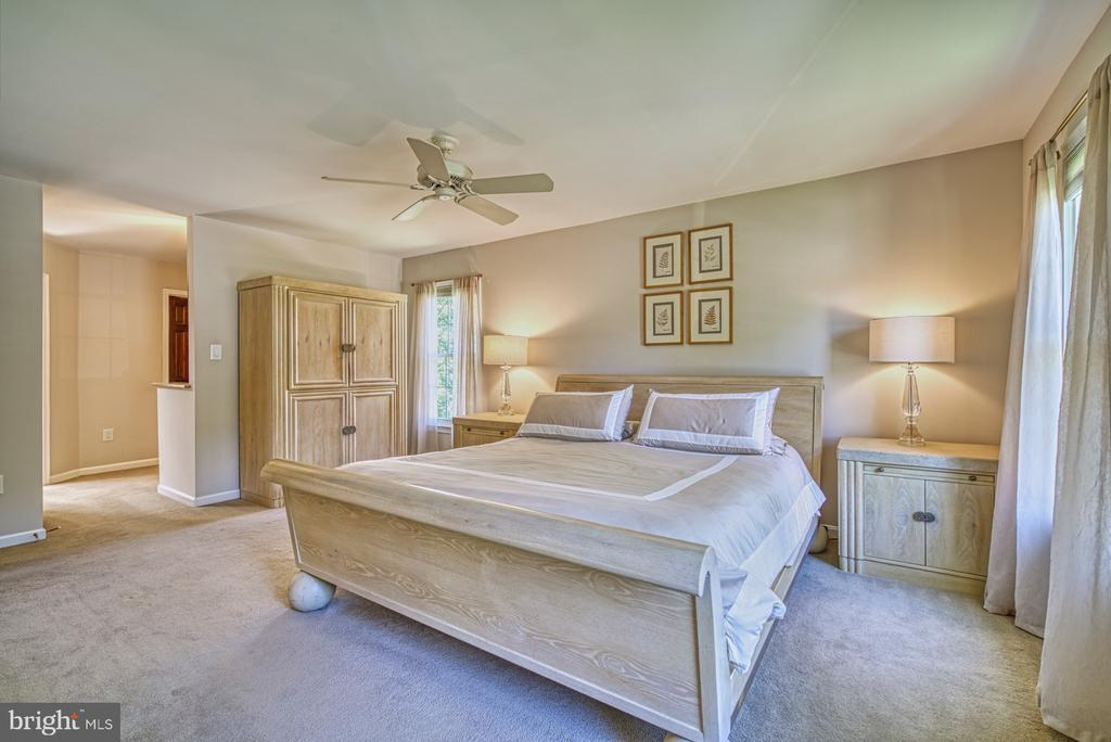 Master Suite - 11959 GREY SQUIRREL LN, RESTON