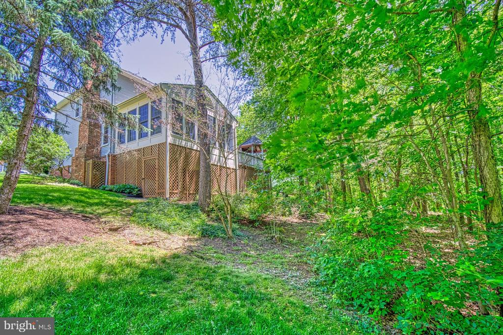 Rear View - 11959 GREY SQUIRREL LN, RESTON