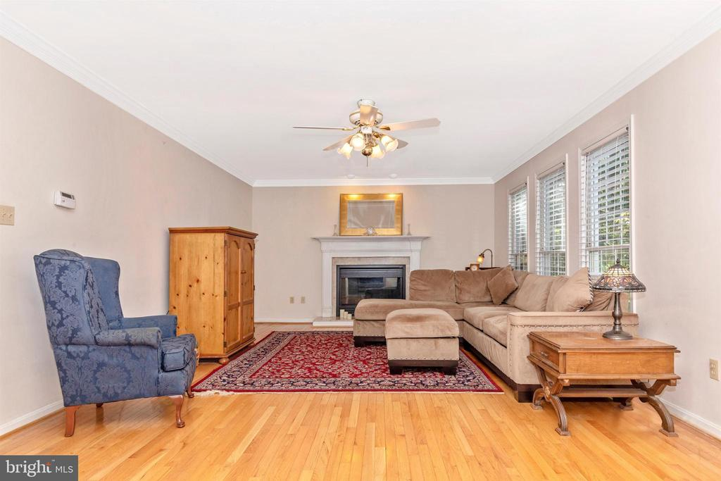 Family Room - 13729 SAMHILL DR, MOUNT AIRY