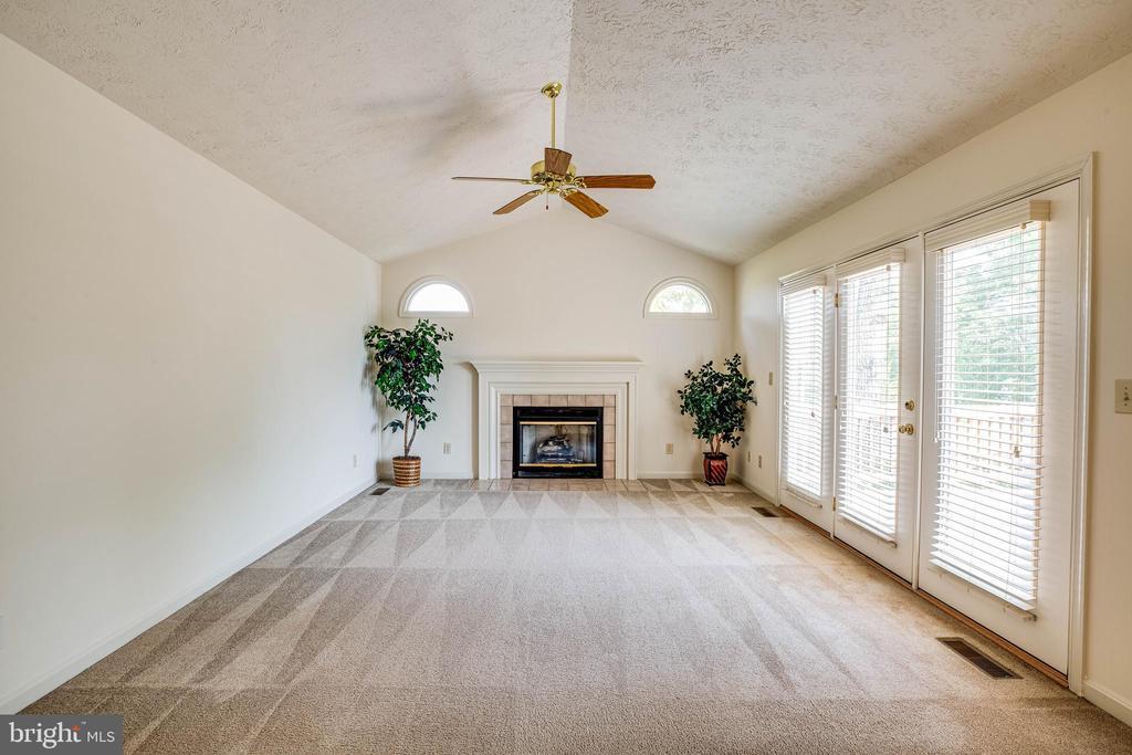 Family Room w/propane fireplace - 208 OLD LANDING CT, FREDERICKSBURG