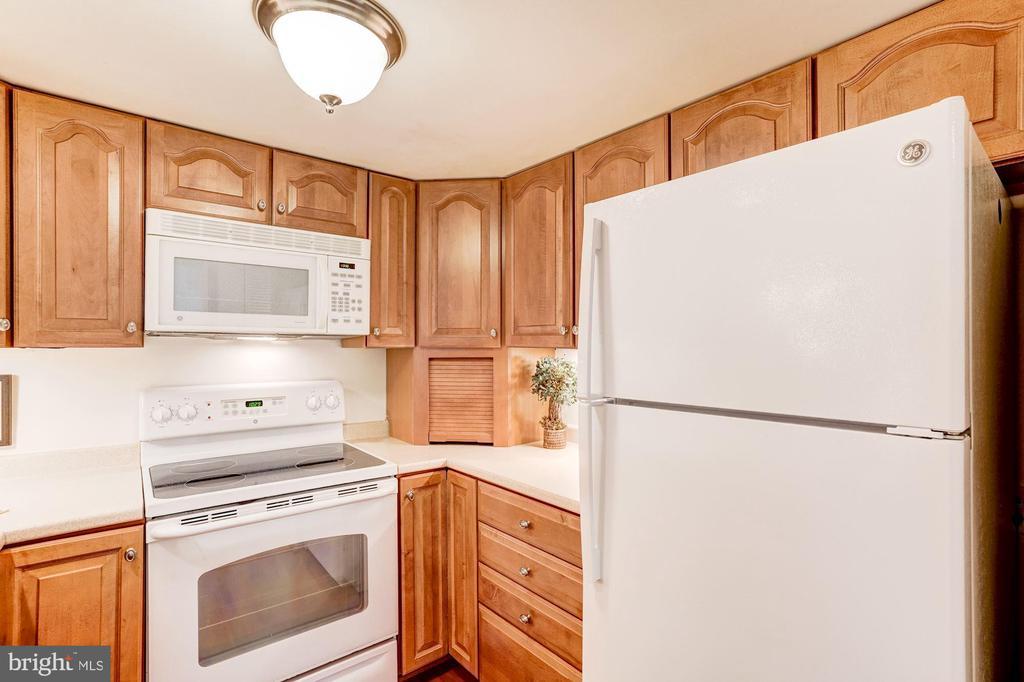 Modern Kitchen in #315 - 1951 SAGEWOOD LN #315, RESTON