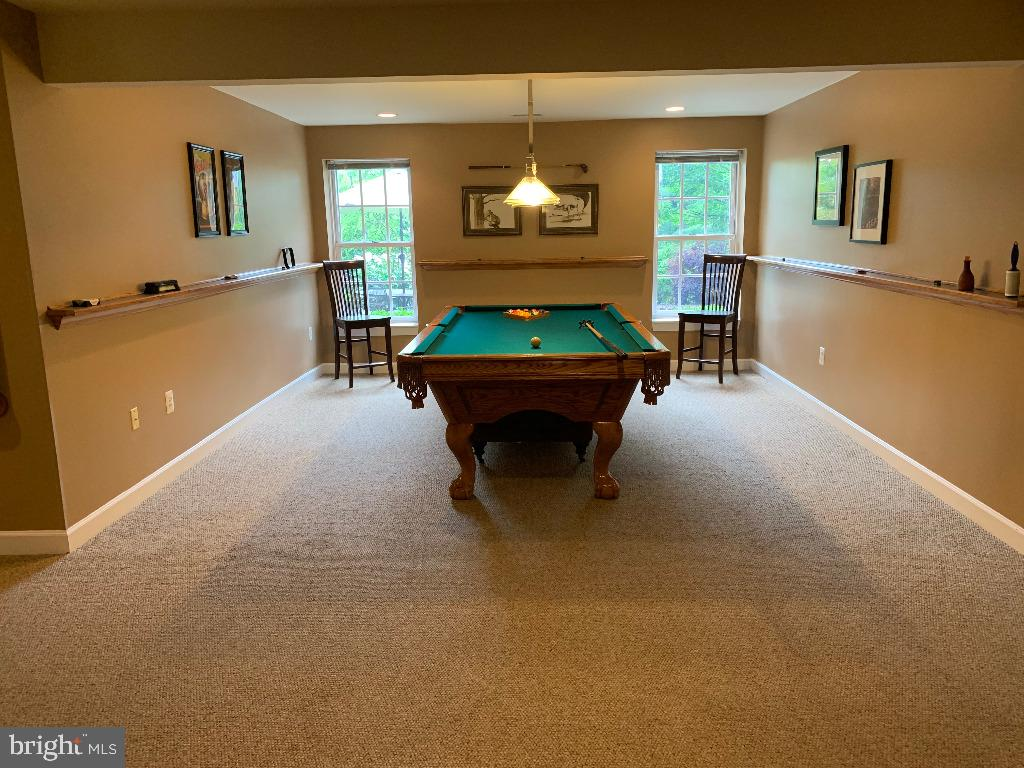 Lower Level Rec Room - 5626 BROADMOOR TER N, IJAMSVILLE