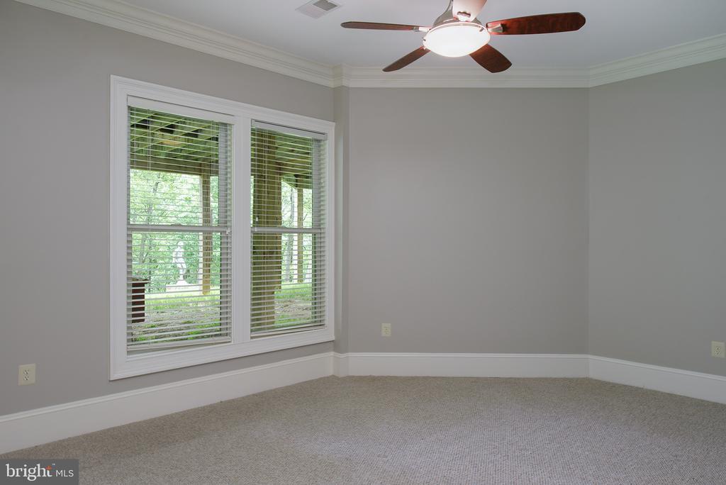 The third lower level bedroom - 41430 FOX CREEK LN, LEESBURG