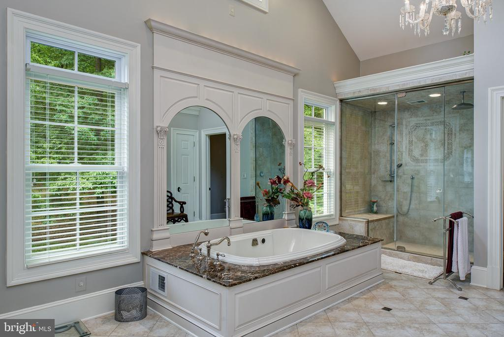 A supremely lavish master bath with steam shower - 41430 FOX CREEK LN, LEESBURG